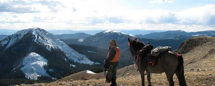 Elk Hunting Guides & Outfitters in Colorado | Samuelson