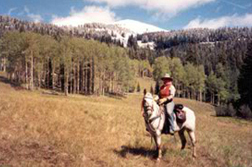 Horseback Riding in Fraser, CO