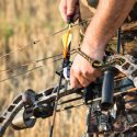 Archery Hunting Tips When Shooting for Elk