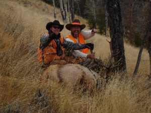 Elk Hunting in Colorado